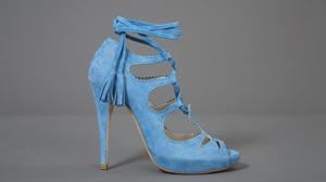lien vers le site officiel de la marque de chaussures Eugène Riconneaus