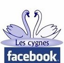 Logo FACEBOOK Les Cygnes