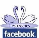 Logo FACEBOOK Les Cygnes