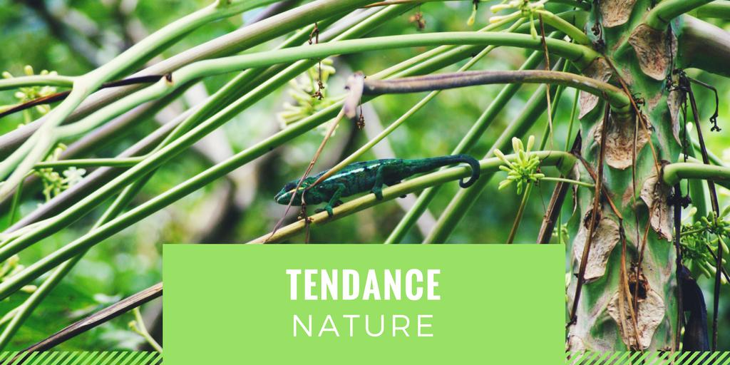 Tendance Nature